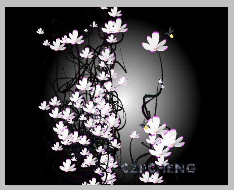 美丽玉兰花迎接春天的到来