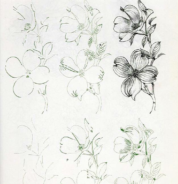 背景 壁纸 简笔画 设计 矢量 矢量图 手绘 素材 线稿 627_645
