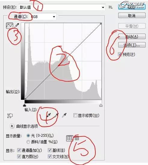 [转载]教你轻松掌握PS曲线工具 - 数字人 - 数字人的学习空间