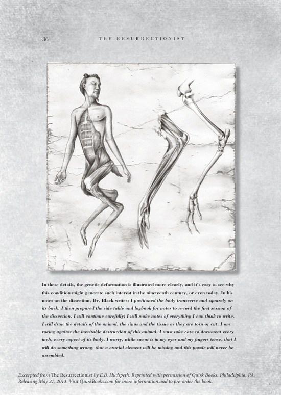 掘尸者:解剖图展示神话怪兽的骨骼肌肉