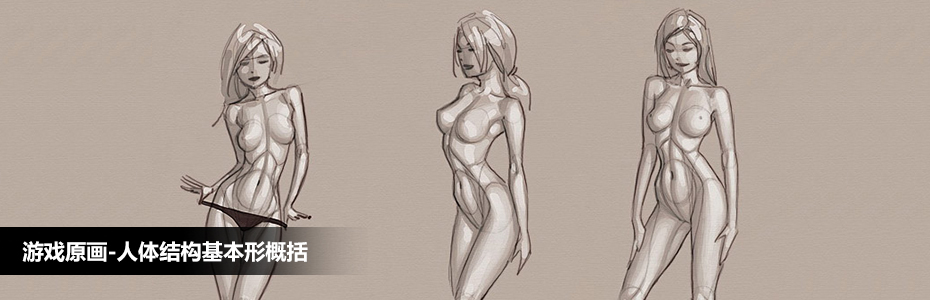 人体结构基本形概括